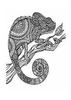 Ausmalbilder Zum Drucken Tier Mandalas Mandala Tiere Malvorlagen