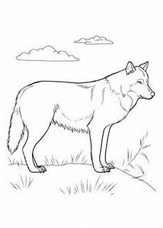 Malvorlagen Wolf Hill Zlatan Ibrahimovitch Coloring Page Coloring Pages