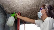 schimmel natürlich entfernen schimmel selber entfernen keller trockenlegen