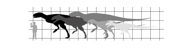 Pycnonemosaurus  Paleontology World
