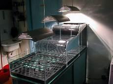 vasche acquari alcune delle nostre realizzazioni per allestimenti privati