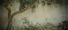 si scrive pasticcera o pasticciera ulivo cos 232 e dove si trova si scrive ulivo o olivo mostrasignorelli