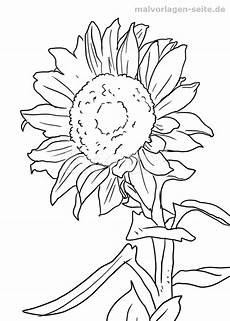 Malvorlagen Sonnenblumen Ausdrucken Malvorlage Sonnenblume Sonnenblumen Malen Sonnenblumen