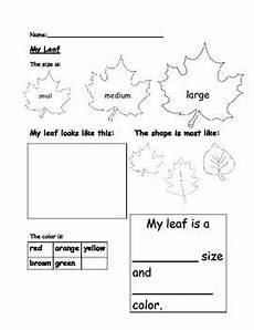 science worksheets leaves 12281 kindergarten my leaf worksheet by elementary and special education resources