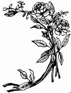 Gratis Malvorlagen Blumen Skizze Blume Ausmalbild Malvorlage Blumen