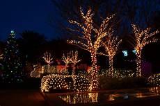 merry christmas from florida dina s wildlife adventures
