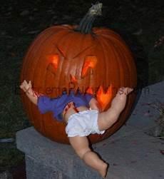 kürbis gruselig humor and pumpkins