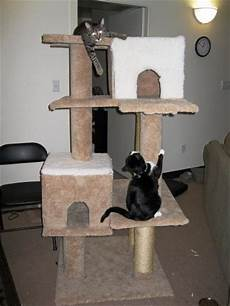arbre a chat ikea 74664 your own cat tree thriftyfun