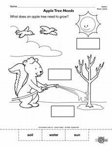 plants and animal needs worksheets 13591 15 best images of basic needs worksheets for kindergarten kindergarten social studies