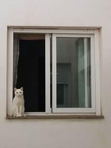 Holz Alu Kunststoff Welche Fenster Sind Die Richtigen