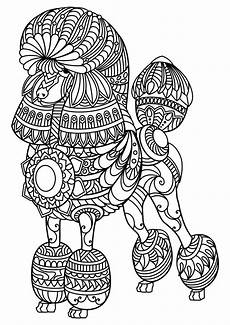 free printable coloring pages of animals 17369 animal coloring pages pdf coloring page mandala coloring pages mandala coloring