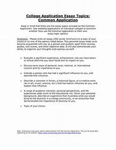 how to write your common common application essay option 1