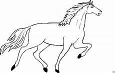 pferd mit langem schweif ausmalbild malvorlage tiere