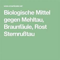 Biologische Mittel Gegen Mehltau Braunf 228 Ule Rost Und