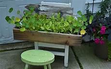 gardening hamburg bad knees no yard money you can still garden