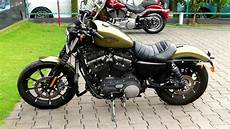 Harley Davidson Iron 883 Olive Gold Colour