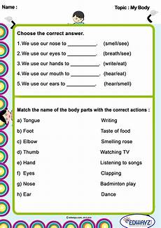 worksheets class1 my 2nd grade worksheets worksheets for class 1 kindergarten reading