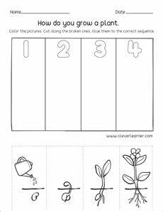 which comes first second and third sequence activity for kids