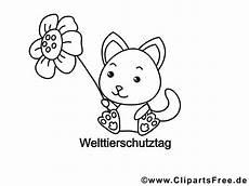 Ausmalbilder Katzenkinder Katze Ausmalbild Zum Drucken Und Ausmalen