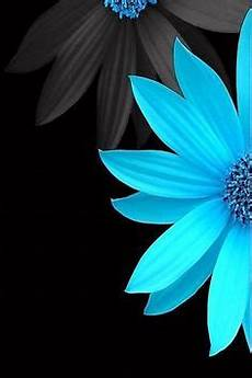 blue green flower wallpaper iphone black and blue flowers wallpaper flowery wallpapers