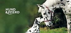 Malvorlage Pferd Und Hund Home Vdh Messe Hund Und Pferd