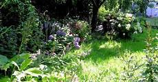 pflanzen f 252 r schatten halbschatten und absonnige