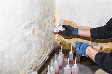 Altes Mauerwerk Reinigen - mould removal sydney rising d geotech built