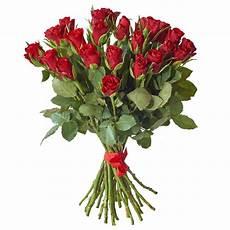 fiori per chiedere scusa fiori per chiedere scusa efiorista in italia ti