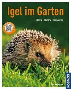 Igel Im Garten Monika Neumeier Buch Buecher De