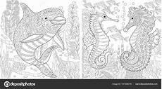 zentangle dolphin en seahorse stockvector 169 sybirko