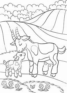 farm animals and their babies coloring pages 17434 coloring pages farm animals goat with baby stock illustration image
