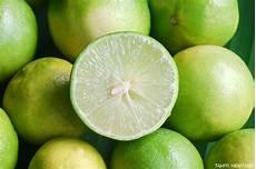 citron vert citron vert de tahiti l inestimable boule verte