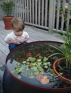 Gartenteich Kindersicher Machen - kleinkind betrachtet das gro 223 e aquarium auf einer