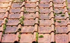 démousser une toiture d 233 moussage et nettoyage de sa toiture pourquoi quand et