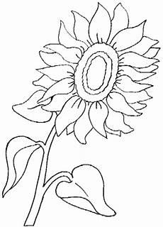 Malvorlagen Sonnenblumen Ausdrucken Sonnenblume Malvorlagen Ausdrucken Coloring And Malvorlagan