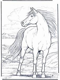 Malvorlagen Pferde Gratis Ausdrucken Malvorlagen Pferde Zum Ausdrucken