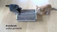 katzenspielzeug selber basteln selbst gemachtes katzen spielzeug kratzbrett follow