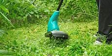 prix du gazon au m2 prix de tonte d une pelouse au m2