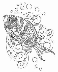Malvorlagen Mandala Fische Fish Colorish Coloring Book For Adults Mandala Relax By