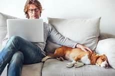 Generelles Haustierverbot In Mietwohnungen Gilt Nicht