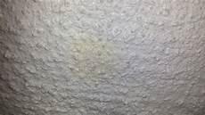 schimmel oder inhaltsstoff putz handwerk streichen