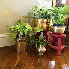 Home Decor Ideas With Plants by Brass Pot Design Brass Indian Home Decor