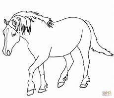 palomino paard kleurplaat gratis kleurplaten printen