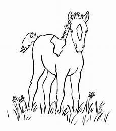 Ausmalbild Pferde Fohlen Ausmalbilder Pferde Zum Ausdrucken