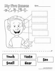 the 5 senses worksheets for grade 12570 www timvandevall wp content uploads 5 senses worksheet