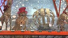 Decorations Home Depot by Home Depot Decor 2015