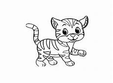 Malvorlage Katzenkopf Einfach Ausmalbilder Katzen Kostenlos Malvorlagen Windowcolor Zum