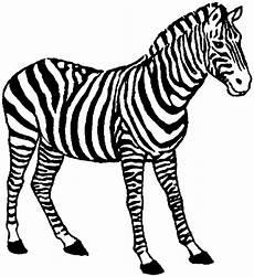 Zebra Ausmalbilder Malvorlagen Malvorlagen Fur Kinder Ausmalbilder Zebra Kostenlos