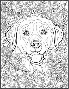 hunde ausmalbilder f 252 r erwachsene kostenlos zum ausdrucken