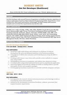 resume headline for net developer